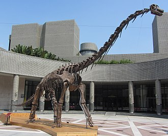 Somphospondyli - Skeleton of Qiaowanlong