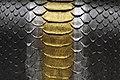 Snake Skin Texture (22).jpg