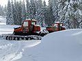 Snowcats.jpg