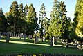 Southborough Cemetery - geograph.org.uk - 1276630.jpg