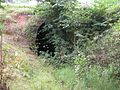 Southnet Tunnel entrance - geograph.org.uk - 244488.jpg