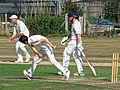 Southwater CC v. Chichester Priory Park CC at Southwater, West Sussex, England 035.jpg