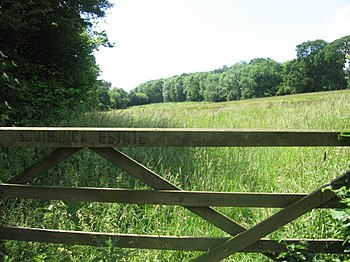 English: Southwick Estate towards Stroud Coppice