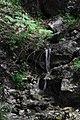 Spitzing-Alm am Wendelstein- Wasserfall - geo.hlipp.de - 11121.jpg