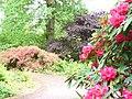 Spring at RHS Wisley - geograph.org.uk - 821684.jpg