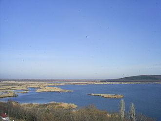 Srebarna Nature Reserve - View towards the Srebarna reserve