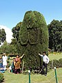 Srinagar - Shalimar Gardens 31.JPG
