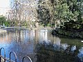 St. Stephen's Green Lake, Dublin-4379487948.jpg