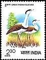 Stamp of India - 1980 - Colnect 505876 - Indian Bustard Choriotis nigriceps.jpeg