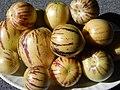 Starr-140402-0147-Solanum muricatum-fruit-Hawea Pl Olinda-Maui (24873871839).jpg