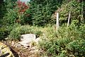 Start of portage trail to Neewin lake, on the Cummings lake side - panoramio.jpg