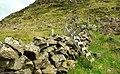 Stile, Slemish (1) - geograph.org.uk - 880264.jpg