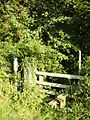 Stile to footpath that follows the North Yorkshire Moors border line - geograph.org.uk - 223341.jpg
