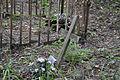 Stolec - cmentarz przykościelny w zespole kościoła ewang., ob. rzym.-kat. p.w św. Maksymiliana Kolbe (1).jpg