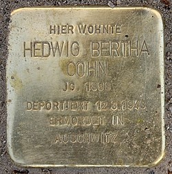 Photo of Hedwig Bertha Cohn brass plaque