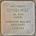 Stolperstein für Aloisia Wolf (Salzburg).jpg
