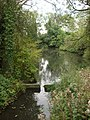 Stream, Clare Country Park - geograph.org.uk - 980710.jpg