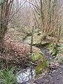 Stream in Darnold Wood - geograph.org.uk - 1208960.jpg