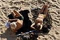 Sunbathing in Ajaccio.jpg