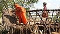 Sundarban Rising Water, Ebbing Life 11.jpg