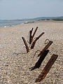 Sunny afternoon on the beach - geograph.org.uk - 826414.jpg