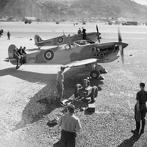 A shipment of 116 Supermarine Spitfires sent by sea was assembled in just 11 days at RAF North Front, Gibraltar. Many of these Spitfires served with the United States Army Air Forces, including the aircraft in the foreground, EP 365 (308th FS, 31st Fighter Group). Supermarine Spitfire Mark Vs assembled by the Special Erection Party in Gibraltar for Operation Torch, 1942.jpg