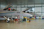 Switzerland - Air Force McDonnell Douglas F-A-18C Hornet J-5024 with J-5235 (22634069045).jpg
