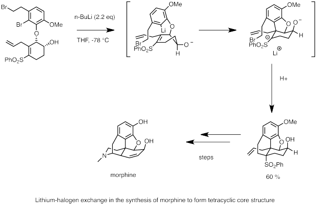 synthesis of morphine lithium halogen exchange