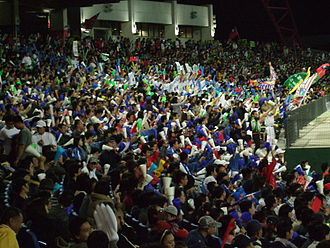 2007 Baseball World Cup - The local crowd celebrates as Chinese Taipei defeat the visitors from Japan 6-1 in the opening round of the 2007 Baseball World Cup