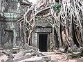 Ta Prohm, Angkor - panoramio - Colin W (1).jpg