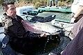 Tagging Chinook salmon 2016-01-26 (24171102273).jpg