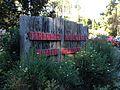 Tamborine Mountain Botanic Gardens 16.JPG