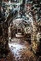 Tarakanov S Fort Ruins (146229467).jpeg