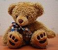 Teddy Bear 90 flash.jpg