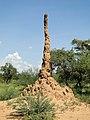 Termite mound, Ethiopia.jpg