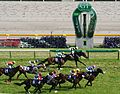 The 60th Yasuda Kinen 20100606R1.jpg