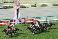 2009年桜花賞