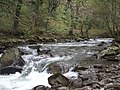 The Afon Afan, Cymmer - geograph.org.uk - 1001060.jpg