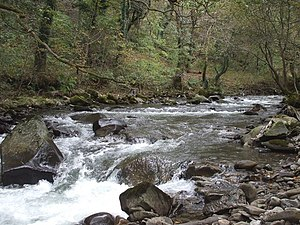 River Afan - The river near to its source at Cymmer.