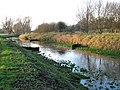 The River Nar in low winter sunshine - geograph.org.uk - 1638996.jpg