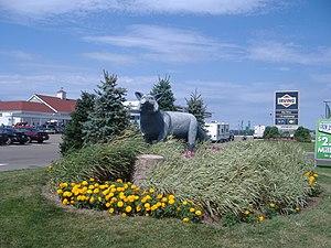 Salisbury, New Brunswick - The Silver Fox