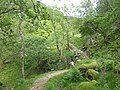 The Silver Path - geograph.org.uk - 1349261.jpg