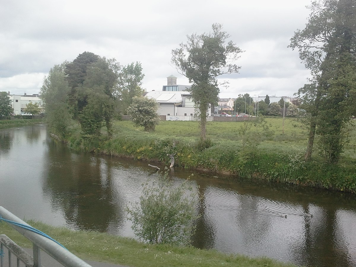 Its a disgrace: Anger in Thurles as Traveller homes dispute