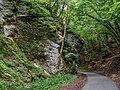 Tiefenstürmig Felsen-20200607-RM-160325.jpg