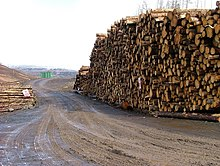 Timber Stack in Glen Hinnisdal - geograph.org.uk - 374126.jpg