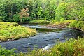 Tobyhanna Creek (3) (21178720550).jpg