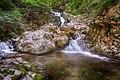 Todtnau - Wasserfall der Wiese am Wasserloch.jpg