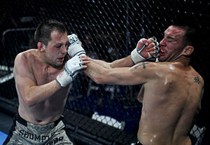 Stand-up fighting - Punching Distance: Fighters in punching distance