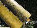 Torn Scrolls from Holocaust Victims Memorial Weizmann Institute Rehovot.jpg