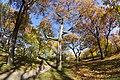 Toronto - High Park (6569761049).jpg